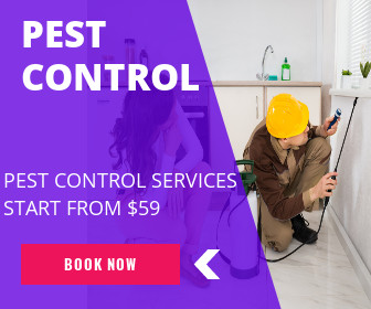 PEST CONTROL – A NEED OF EVERY HOUSE