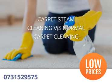 CARPET STEAM CLEANING VS NORMAL CARPET CLEANING